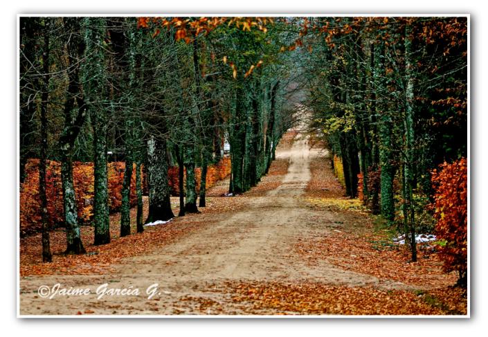otoño 2014 segovia final , marco
